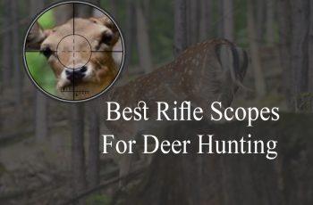 Best Scopes for Deer Hunting