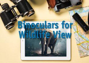 Binoculars for Wildlife View