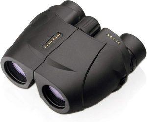 Leupold BX-1 Rogue Binocular