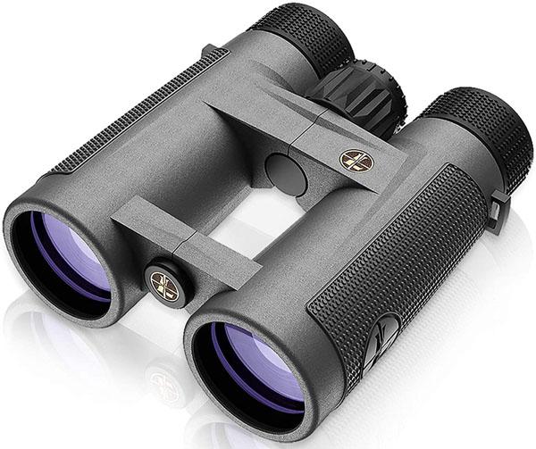 Leupold BX-4 10x42mm Binocular