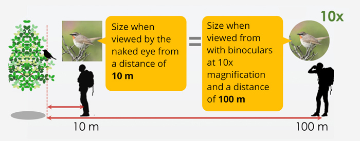 Magnification by distance