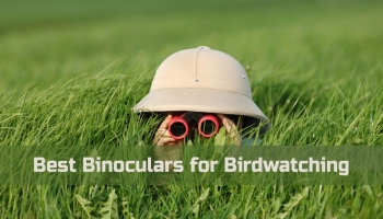 What Are the Best Binoculars for Birdwatching: The Science Behind Your Binoculars